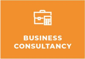 business consultants galway
